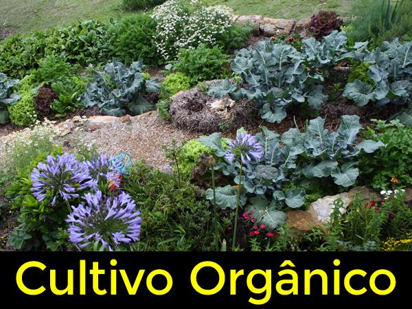 Curso de Cultivo Orgânico