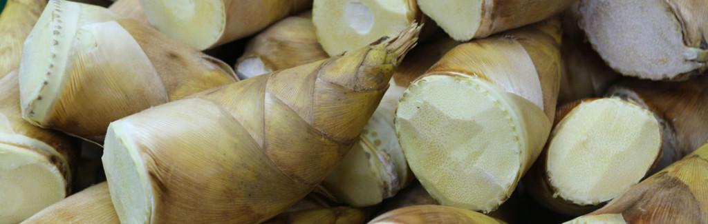 Pedaços de broto de bambu