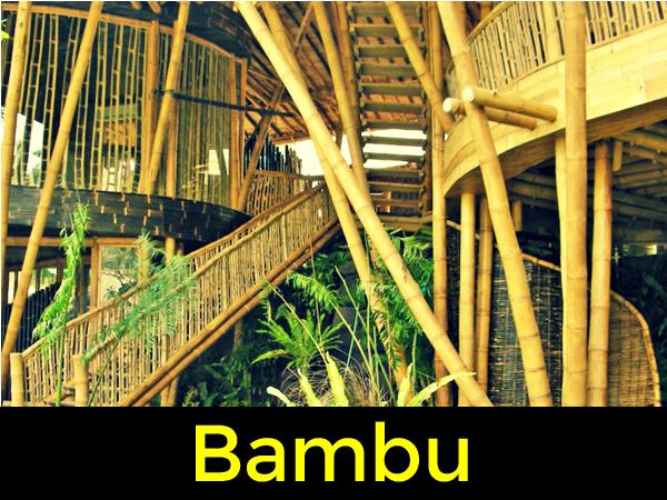 Curso de Bambu