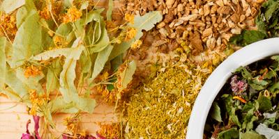Como cultivar e preparar ervas medicinais para ter mais saúde