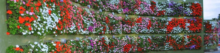 Ideias De Jardinagem E Paisagismo. Expoflora Zoomoutmap ...