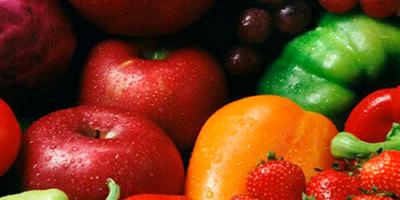 Alimentos vegetais