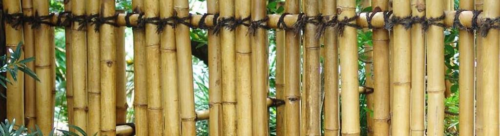 Cercas de bambu no Japão