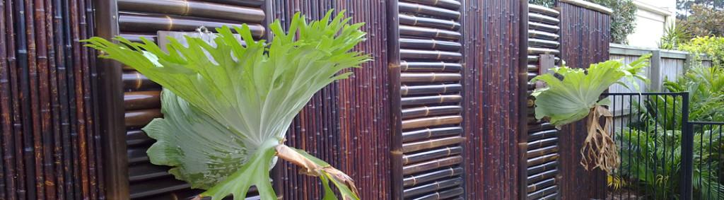 Cercas de bambu na arquitetura