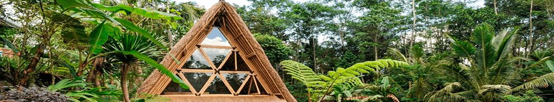 Permacultura e Ecovilas: Como desenhar um paraíso tribal natural